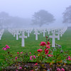 Crosses over roses, American Cemetery, Omaha Beach, Normandy France