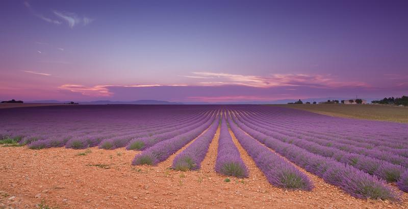 Valensole (France)