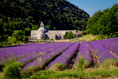Abbey Notre-Dame de Senanque - built in 1148 by Cistercian monks, set deep within a remote canyon and surrounding by acres of lavender.