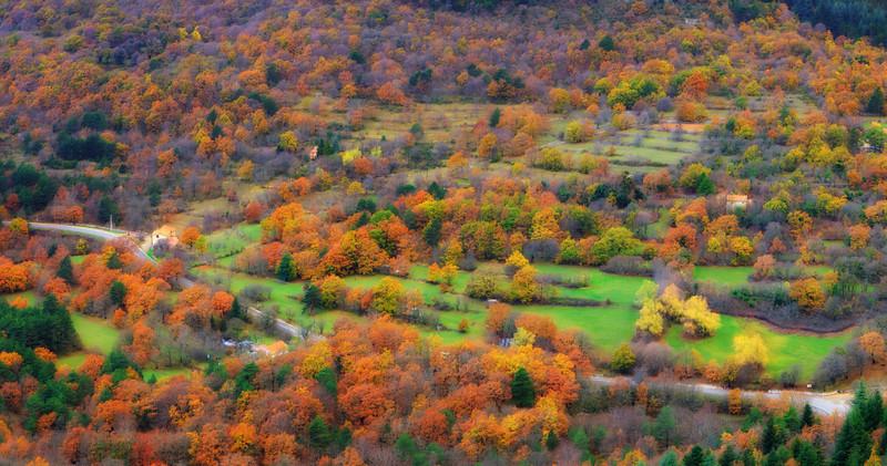 <b>Fall Foliage (French Riviera)</b> <i>Canon EOS 5D Mark II + Canon EF 24-70mm f/2.8L USM</i>