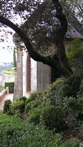 Gardens at Marqueyssac