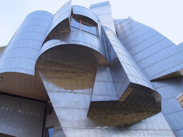 Frank Gehry's - Weisman Art Museum
