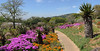 Kirstenbosch National Botanical Garden (Best viewed at X2)