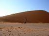 Climbing Dune 45, Sossusvlei