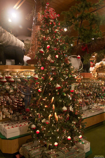 """Some photos from Bronner's Christmas Wonderland in Frankenmuth, MI.<br />  <a href=""""http://www.bronners.com/"""">http://www.bronners.com/</a><br /> This reminded me of my dad because of how he loves fishing, a tree decorated only with fishing related ornaments & lights."""