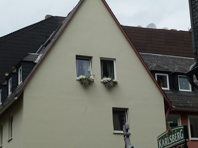 there are flower boxes on the windows everywhere.