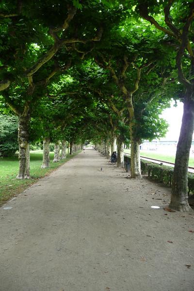 Path along the Main river