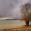 Lac Du Der