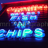 Vivid Neon, Fishing Boat Harbour