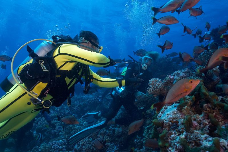 """Douglas Seifert and Seb Bartaut.  Douglas is """"encouraging"""" the red snappers not to go for the bait. (Rangiroa - Avatura Pass Corner)"""
