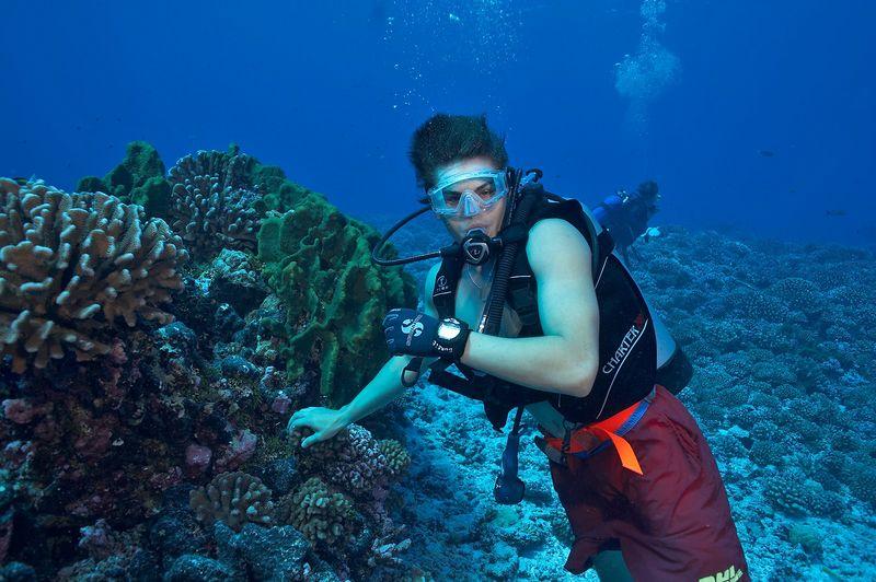 Locky Bursle dives with no wetsuit (Rangiroa - Tiputa Pass Corner)