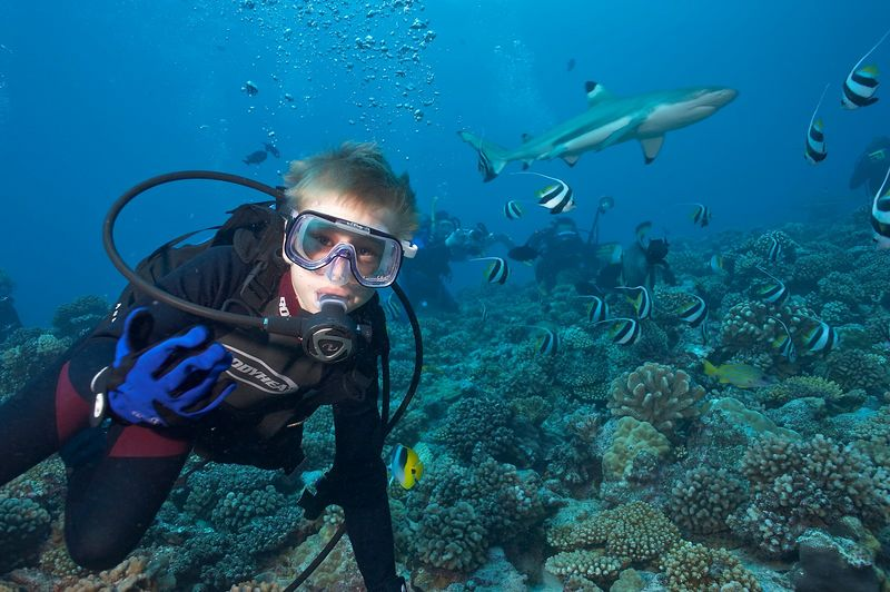 Timothy McDowell, in the water with Blacktip reef sharks (Carcharhinus melanopterus) (Moorea - Misc Diving)