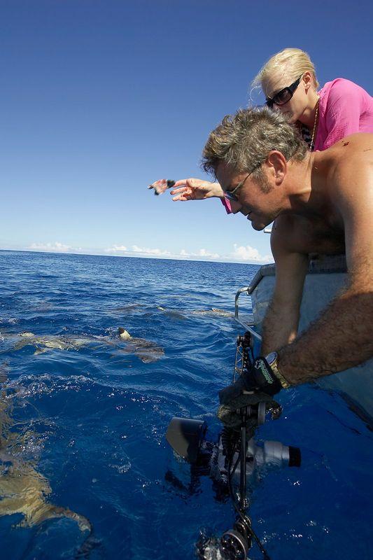 Douglas Seifert photographs Blacktip reef sharks (Carcharhinus melanopterus) at the surface, with help from Kristina Gossman (Moorea - Tiki Place)
