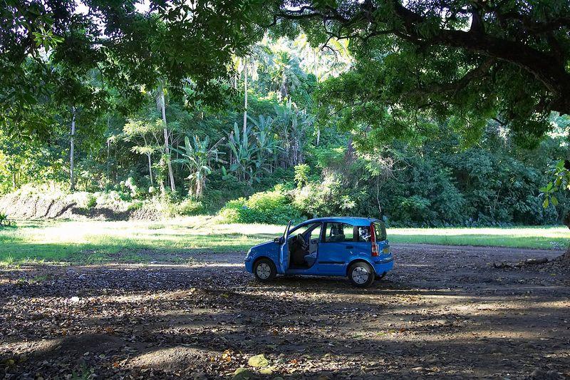 Our cute little car! (Moorea - Misc Topside)