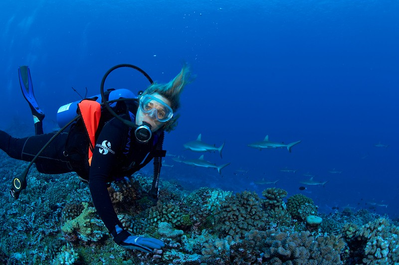 Pat Hamilton with grey reef sharks (Carcharhinus amblyrhynchos) (Fakarava - South Pass)
