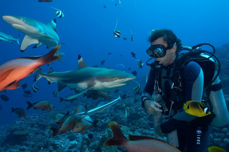 Guillaume Vilcot with Blacktip reef sharks (Carcharhinus melanopterus) (Moorea - Misc Diving)