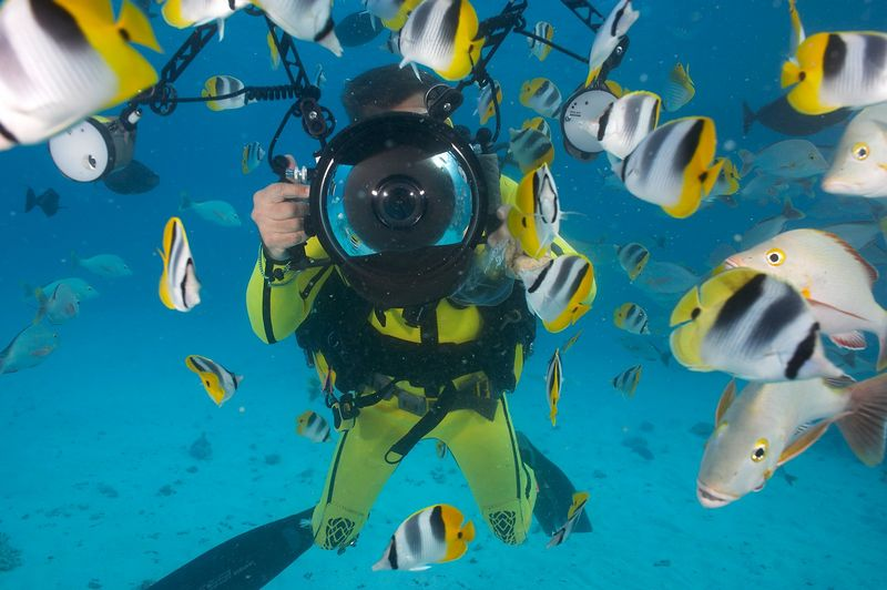 Douglas Seifert photographs me and a school of saddle butterflyfish (Chaetodon ulietensis) (Rangiroa - The Aquarium)