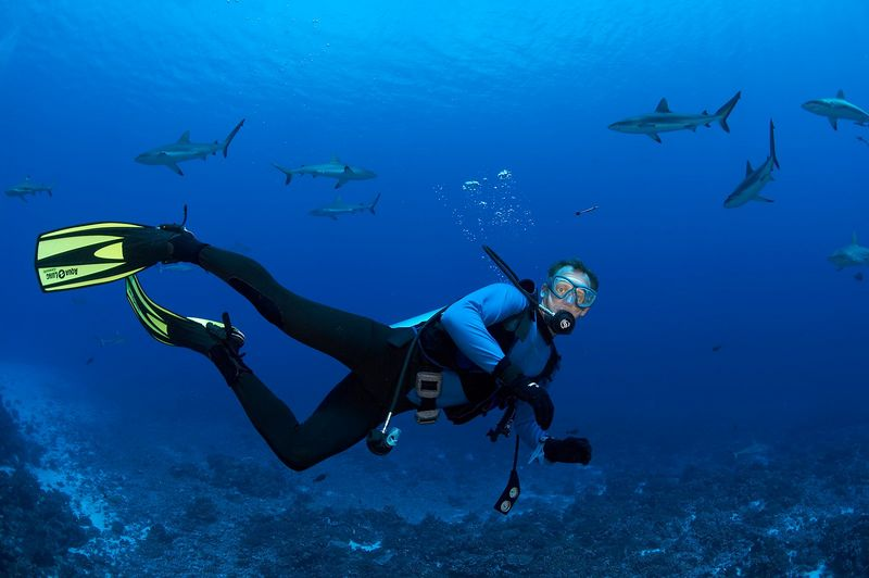 Halvor Tweto and grey reef sharks (Carcharhinus amblyrhynchos) (Fakarava - South Pass)