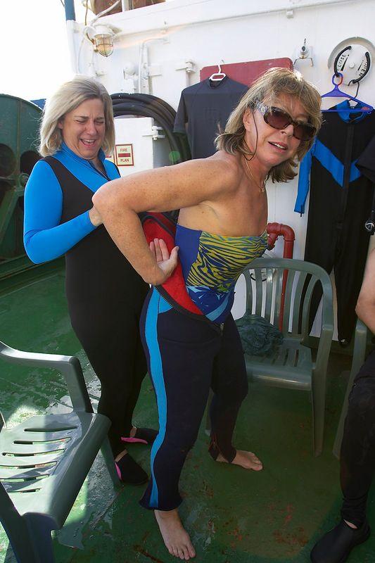 Pat Hamilton helps Marti Georgeff to suit up (Boat - Akademik Shokalskiy)
