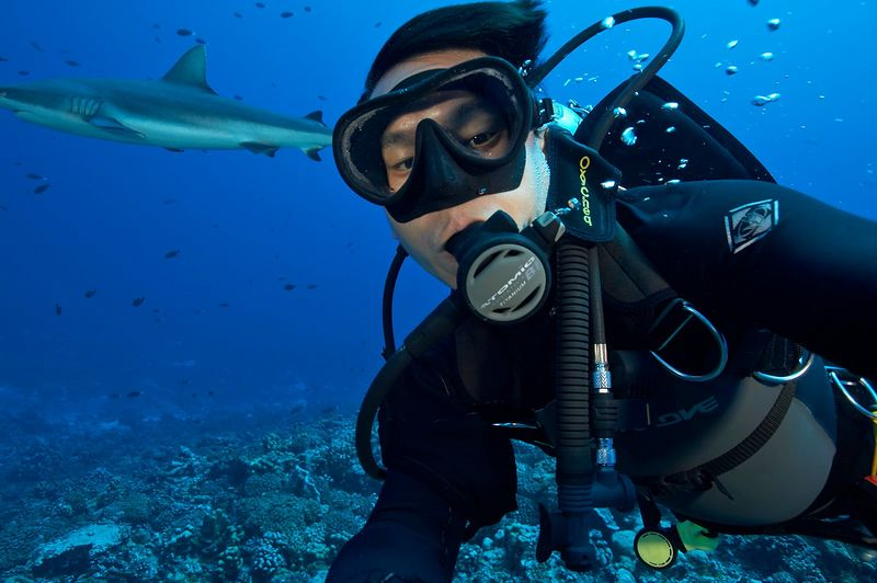 Self-portrait in the current, with grey reef shark (Carcharhinus amblyrhynchos) (Fakarava - South Pass)