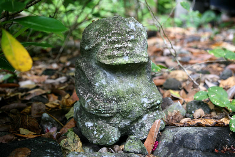 Hakaui Valley tiki may be hundreds of years old.