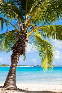 Tikehau, Tuamotu Archipelago, French Polynesia
