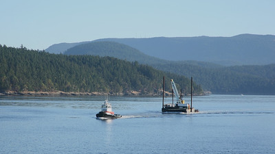 Cool working boats between Shaw and Lopez Islands.