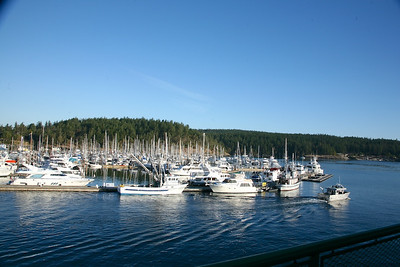 Friday Harbor in the AM
