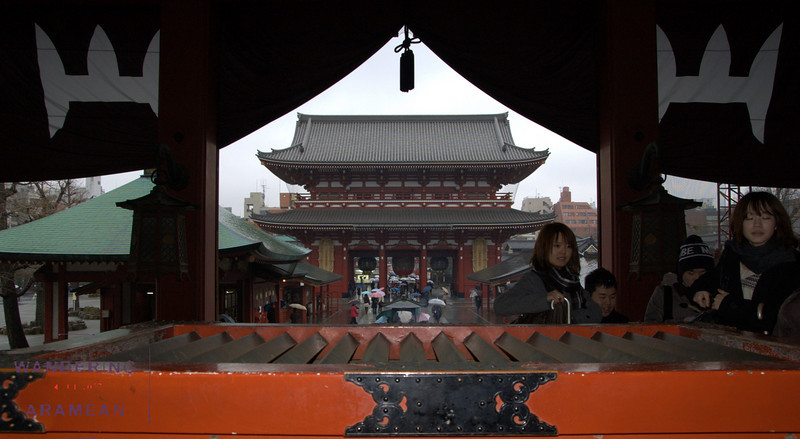 Looking out from the Sensoji Temple