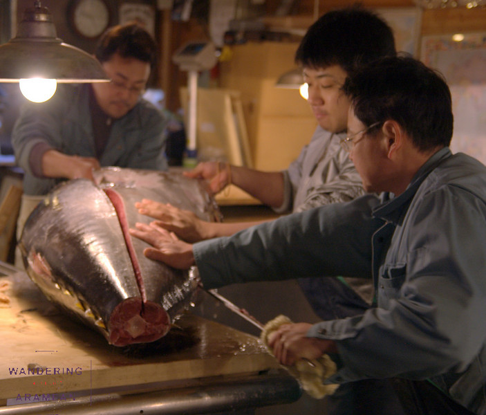 Sectioning a giant tuna in Tsukiji