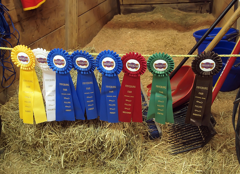 Winning ribbons at the Fryeburg Fair