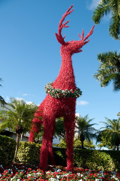 • Reindeer in front of the Galleria Mall in Ft Lauderdale<br /> • Pre HDR