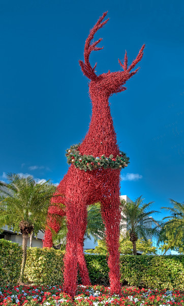 • Reindeer in front of the Galleria Mall in Ft Lauderdale<br /> • Post HDR