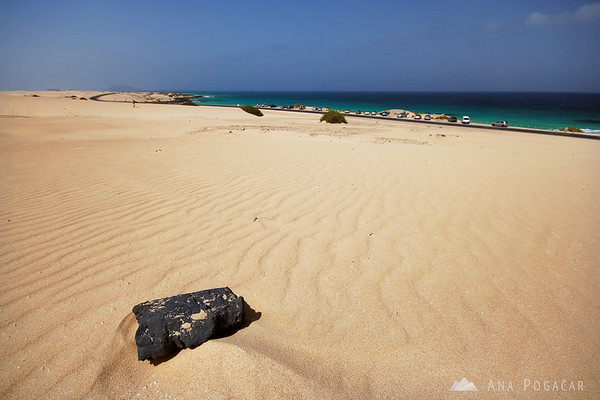 Yellow dunes at Corralejo       Buy a digital copy: 	Digital download (hi-res) €100.00 EUR