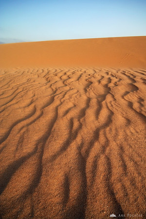 Pattern in the sand       Buy a digital copy: 	Digital download (hi-res) €100.00 EUR