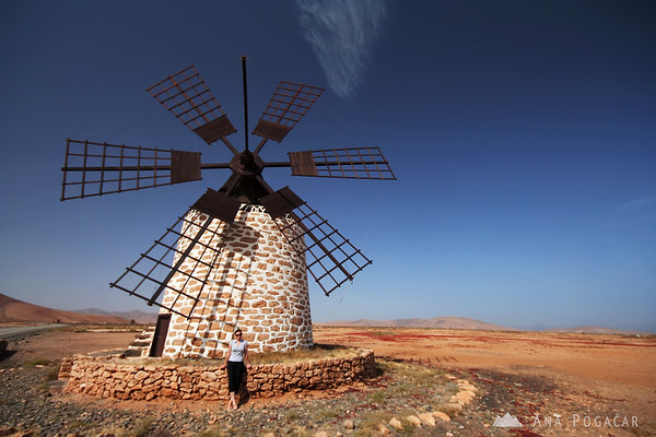Windmill       Buy a digital copy: 	Digital download (hi-res) €100.00 EUR