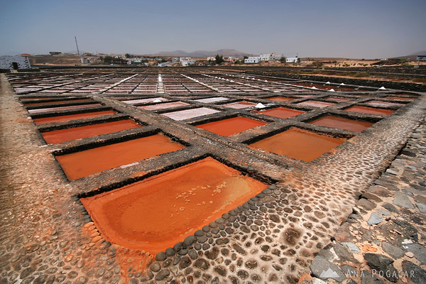 Red salt pans at Las Salinas del Carmen       Buy a digital copy: 	Digital download (hi-res) €100.00 EUR