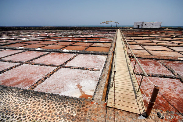Salt pans at Las Salinas del Carmen       Buy a digital copy: 	Digital download (hi-res) €100.00 EUR
