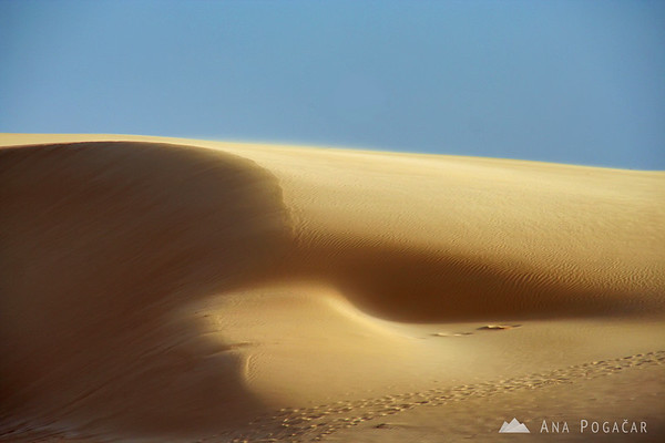 Windswept dune       Buy a digital copy: 	Digital download (hi-res) €100.00 EUR