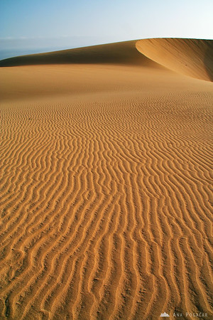 Desert       Buy a digital copy: 	Digital download (hi-res) €100.00 EUR