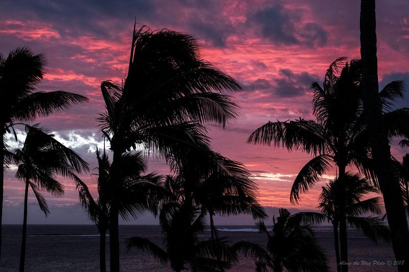 Fiji-05142