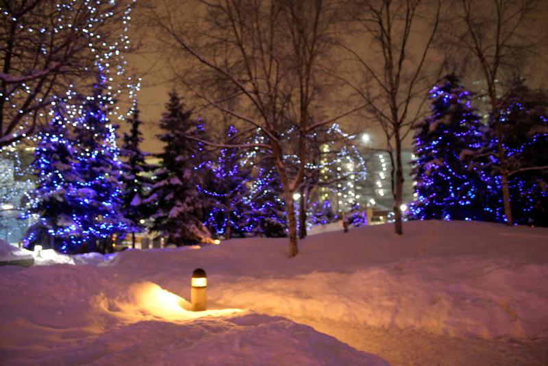 Alaska_Christmas_2012_Raw151