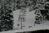 Alaska_Christmas_2012_Raw191