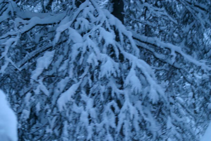 Alaska_Christmas_2012_Raw169
