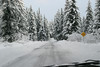 Alaska_Christmas_2012_Raw186