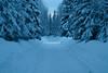Alaska_Christmas_2012_Raw166