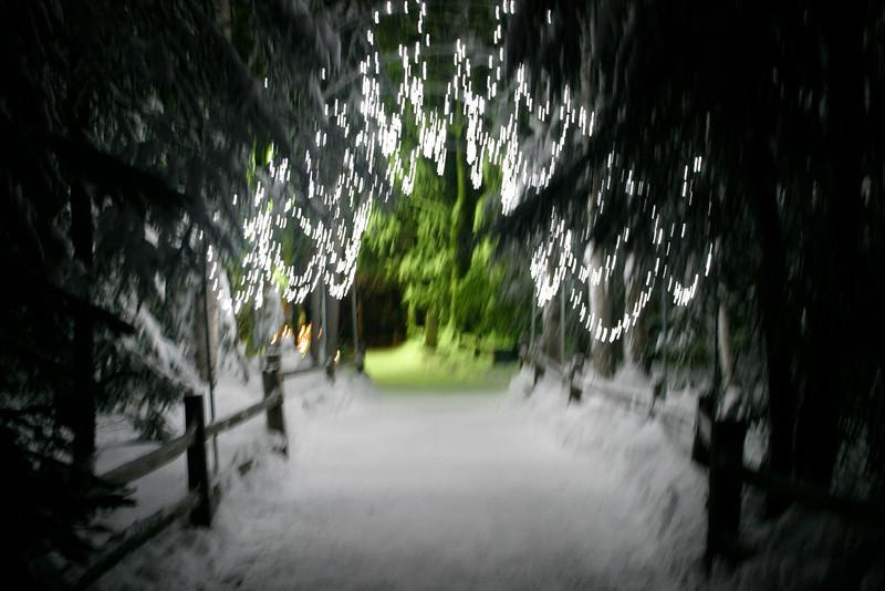 Alaska_Christmas_2012_Raw175