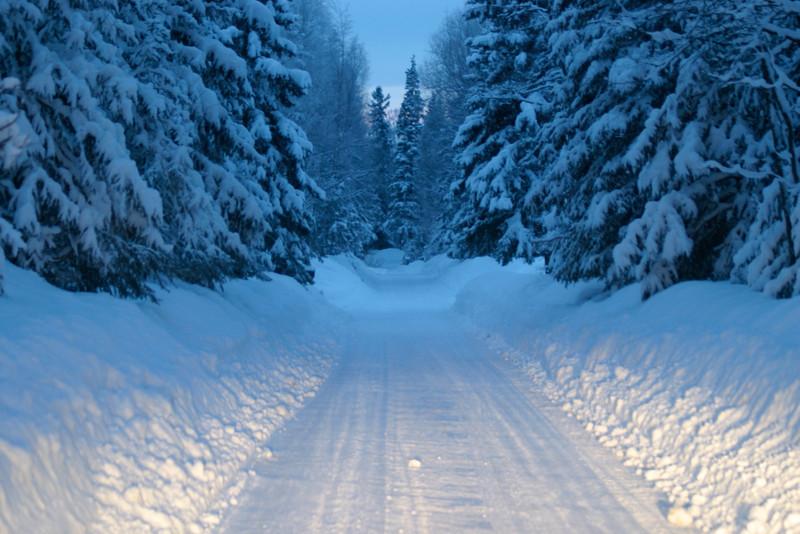 Alaska_Christmas_2012_Raw165