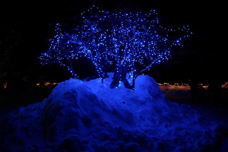 Alaska_Christmas_2012_Raw177
