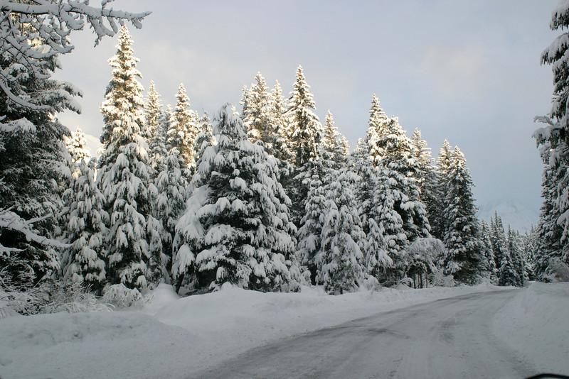 Alaska_Christmas_2012_Raw184